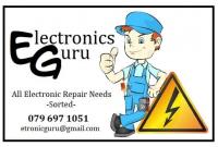 ELECTRONIC GURU logo.png